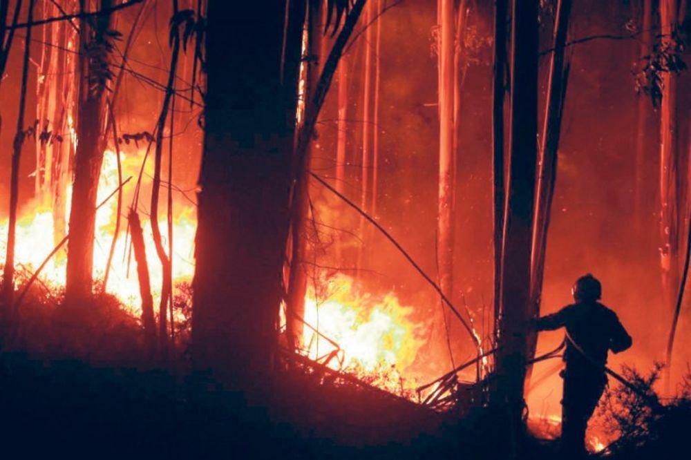 Požar kod Knina
