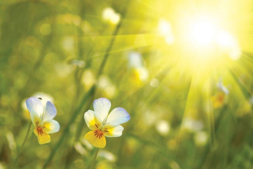 U Srbiji sunčano i toplo u nedelju, do 21 stepen