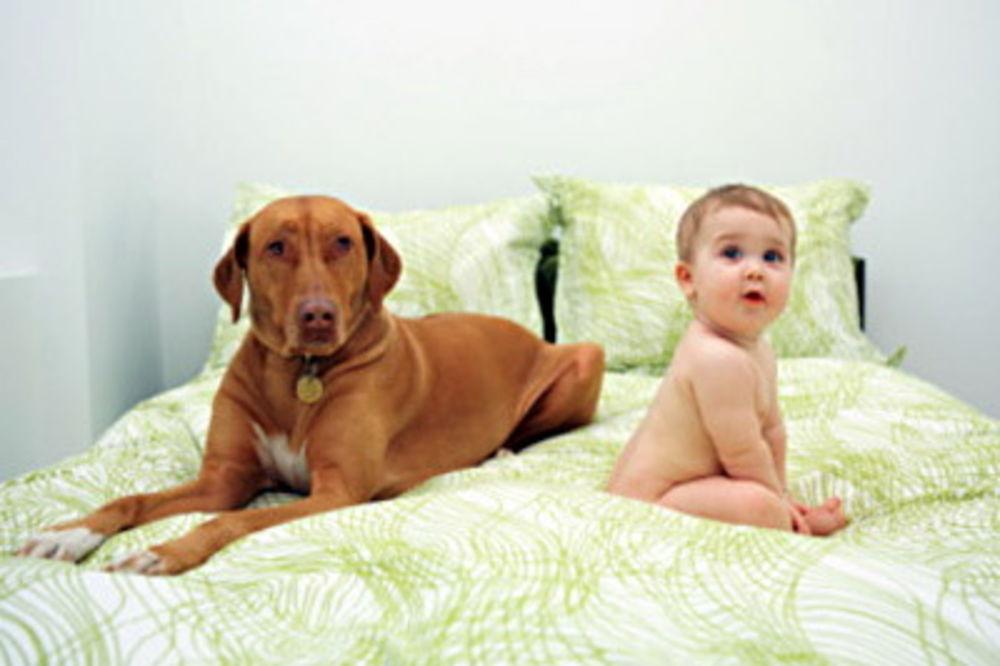 Psi čuvaju bebe od infekcija