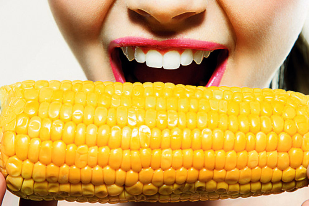 Кукуруза по-прежнему на первом месте среди экспортных продуктов Сербии