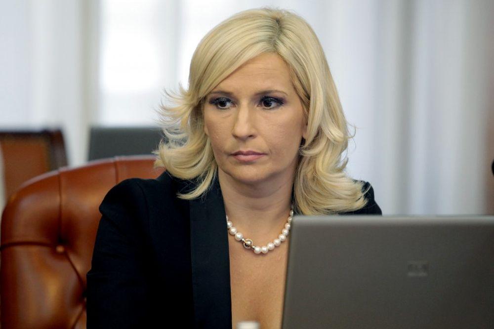Mihajlovićeva: DS želi da se dokopa vlasti