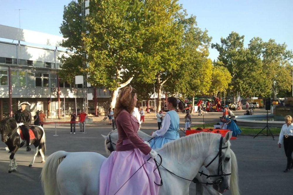 Pogledajte, barokni ples na konjima