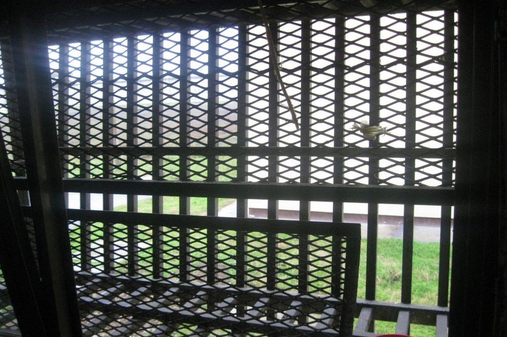 NESVAKIDAŠNJA PLJAČKA: Zet i tast provalili u zatvor da kradu