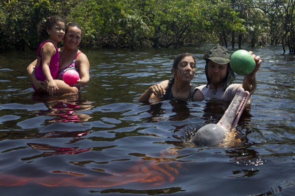 Brazilska terapija uz pomoć delfina