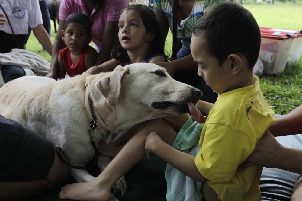 Panamska terapija pomoću životinja