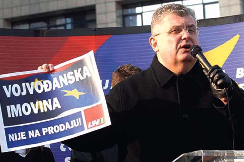 Nenad Čanak, vojvođansko političko proleće, Vojvodina, otcepljenje