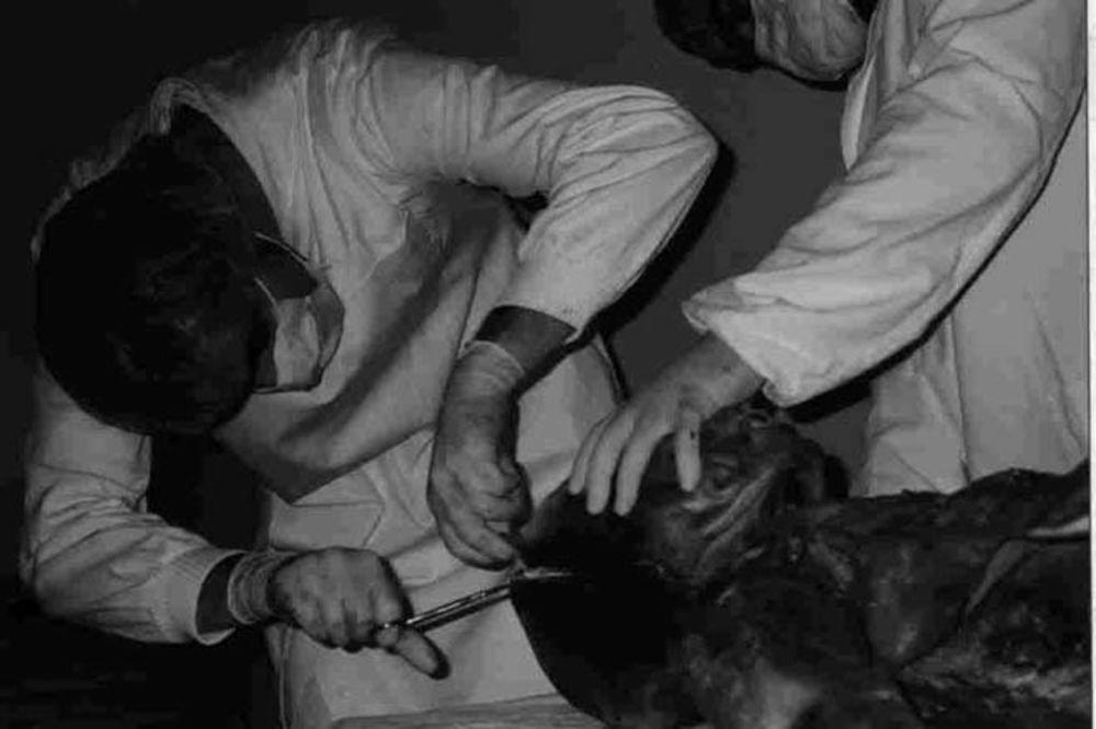 Autopsie d'un extra terrestre dans un hôpital Yougoslave Autopsija-vanzemaljac-u-vojnoj-bolnici-jna-1376327861-351695