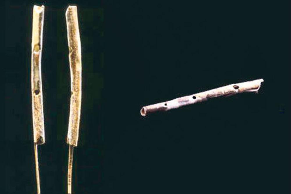 Najstariji muzički instrument
