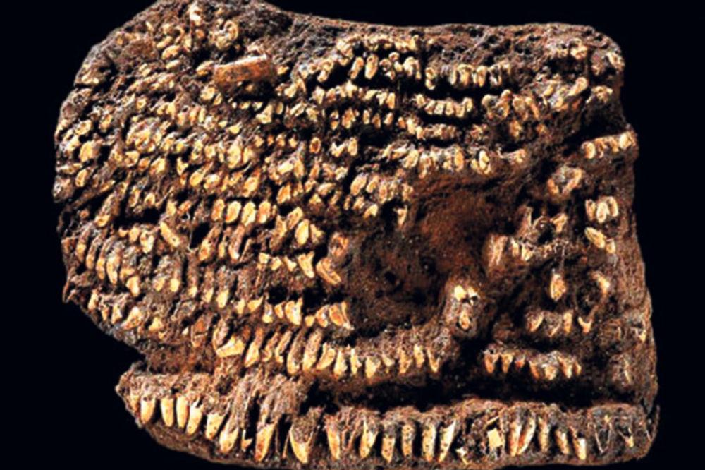 Arheološke zanimljivosti - Page 6 Arheolozi-staro-doba-1377988095-359675