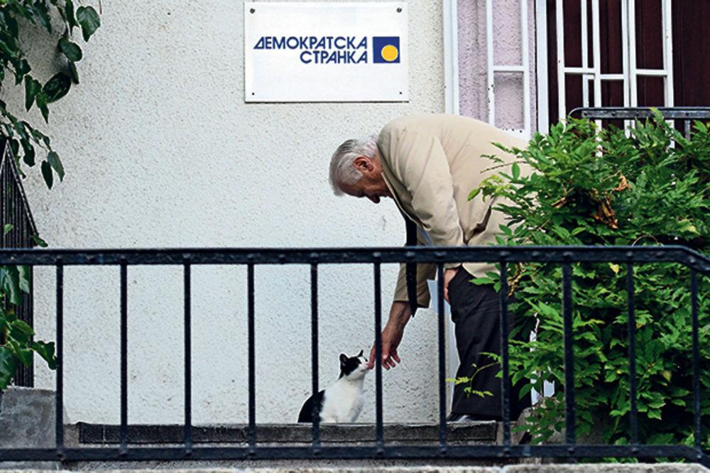 Foto: Nebojša Mandić http://bit.ly/1o3QvMm
