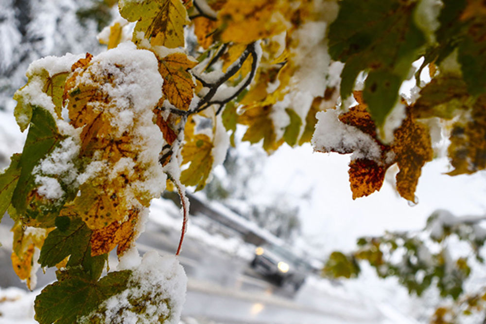 ETO NAMA ZIME: Na Kopaoniku minus 4, u Sjenici 16 cm snega!