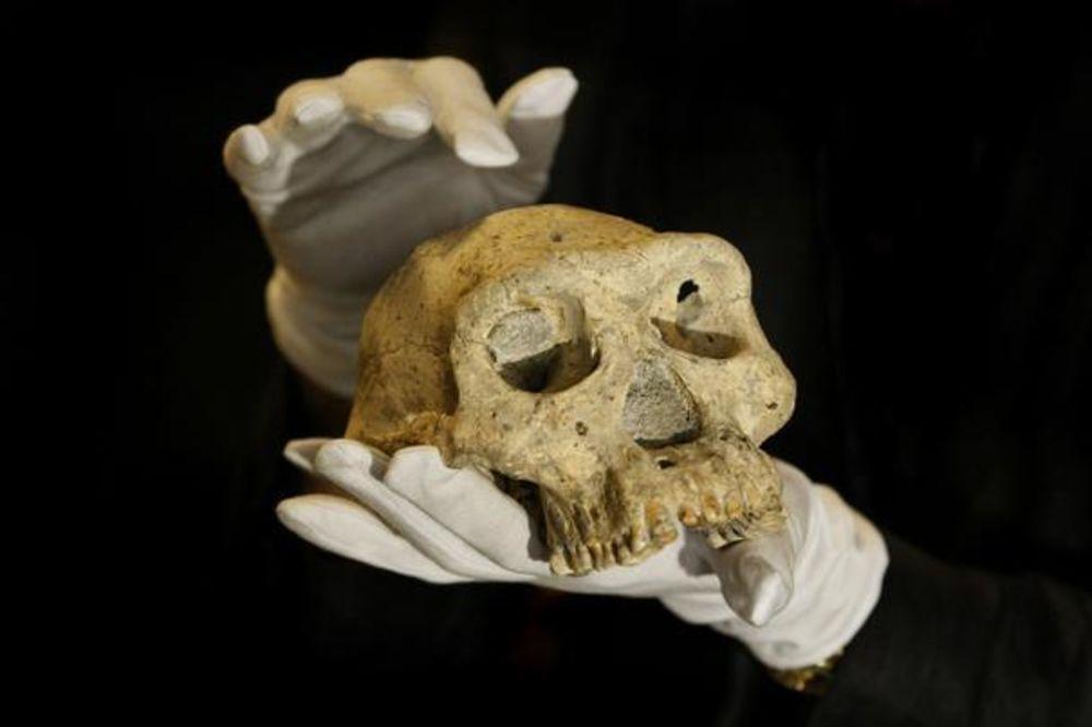 NIKO NE ZNA ŠTA SU: Pronađeni ostaci nepoznate vrste čoveka!