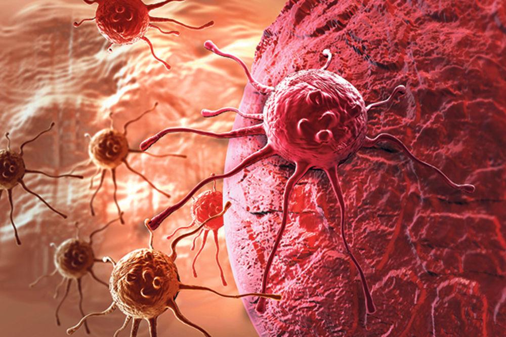 KONTROVERZNA TEORIJA: Lek protiv raka pronađen u ljudskom telu?