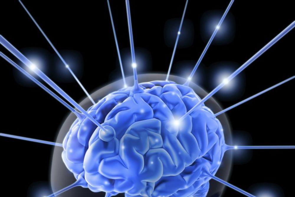 LOGIČAR ILI KREATIVAC: Koji deo mozga više koristiš?