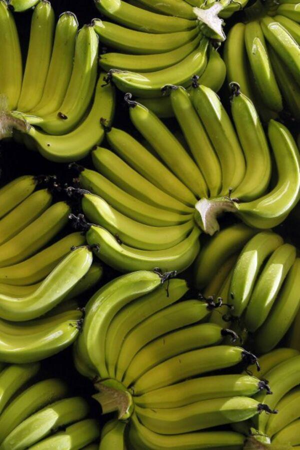 PRIRODNA VIJAGRA: Muškarci, ako želite fantastičnu erekciju, jedite ove namernice