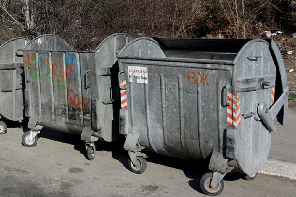 NIŠ: Dve kašikare pronađene u kontejneru