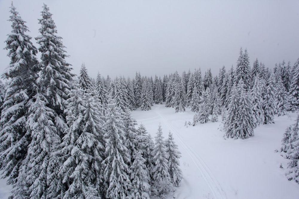 SNEG NE PRESTAJE: Pada u Sjenici i na Kopaoniku