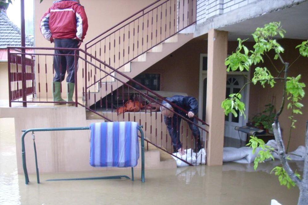 (VIDEO) NIŠLIJE OČAJNE: Fekalne vode poplavile ulice, podrume i dvorišta