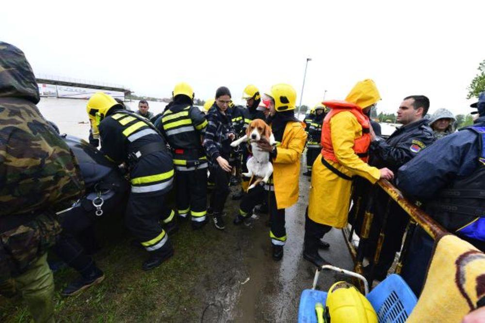 obrenovac-poplave-evakuacija-foto-tanjug-1400311633-498319.jpg