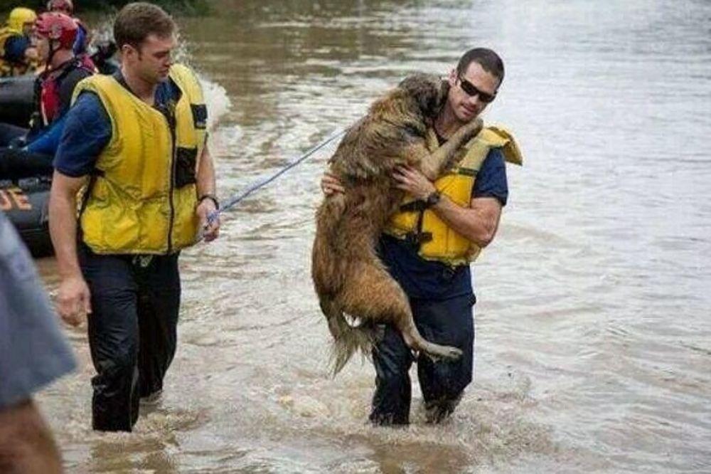 MAJ. 2014 GOD. Sremska-mitrovica-evakuacija-foto-twitter-queensonyk-1400338585-498645