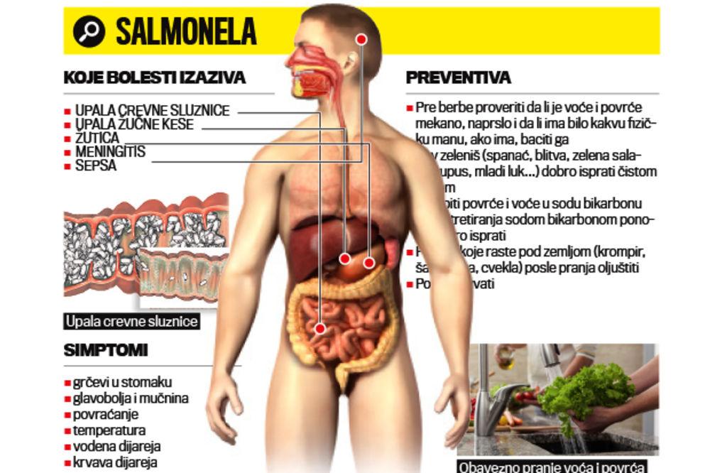 OPASNO: Jagode i salata puni salmonele