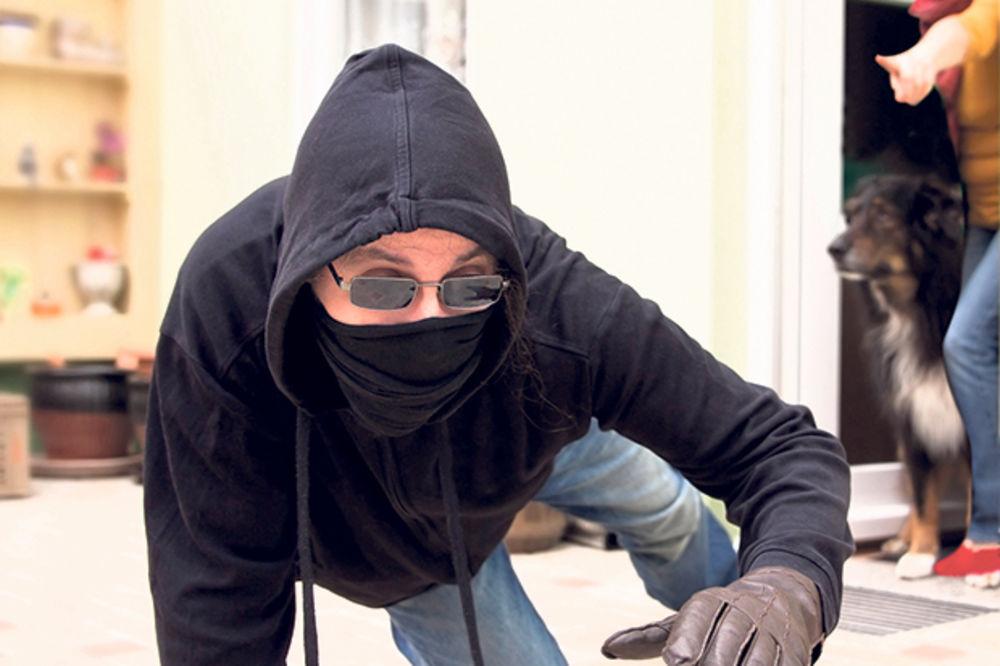 NAŠAO IZLAZ: Lopov uhvaćen na delu zbunio gazdu kuće i pobegao!