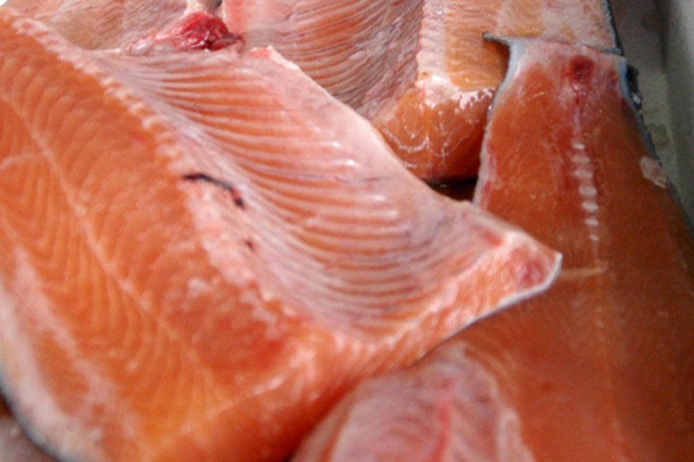 RASTE TRAŽNJA U RUSIJI: Čile podiže cenu lososa!