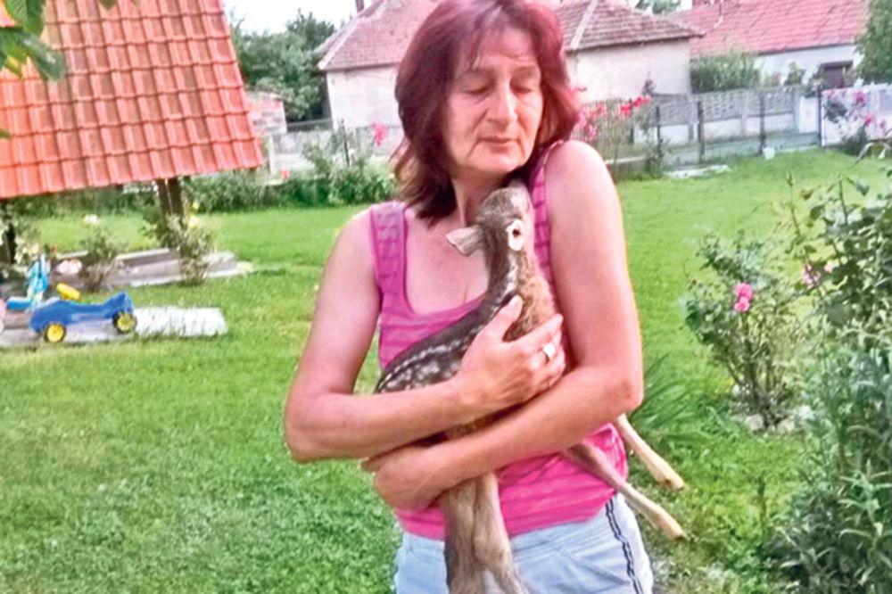 Molba Dragane Mitić: Samo hoću da mi vrate moje lane!