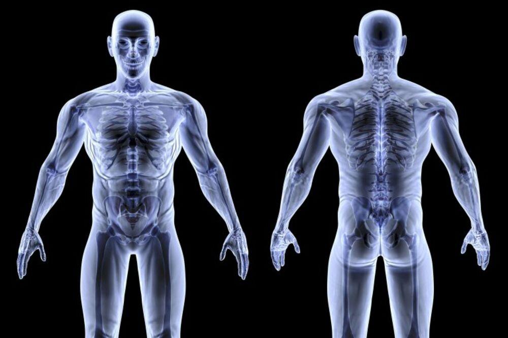 10 stvari za koje nikada niste čuli o ljudskom telu!