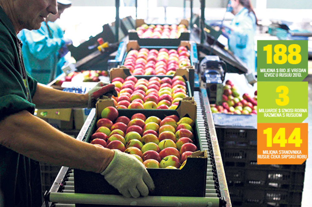 ZAMENA: Naše jabuke idu Rusiji a mi ćemo jesti poljske