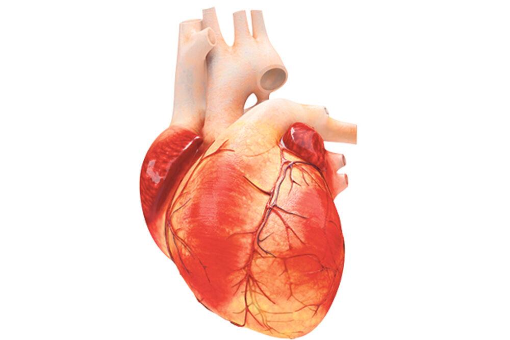 OVO BI TREBALO DA ZNATE: 5 stvari koje nam čuvaju srce od raka! Ne, nije način ishrane...