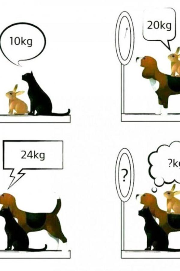 Matematika kroz igru i zabavu - Page 2 Zagonetka-foto-internet-1409228956-558513