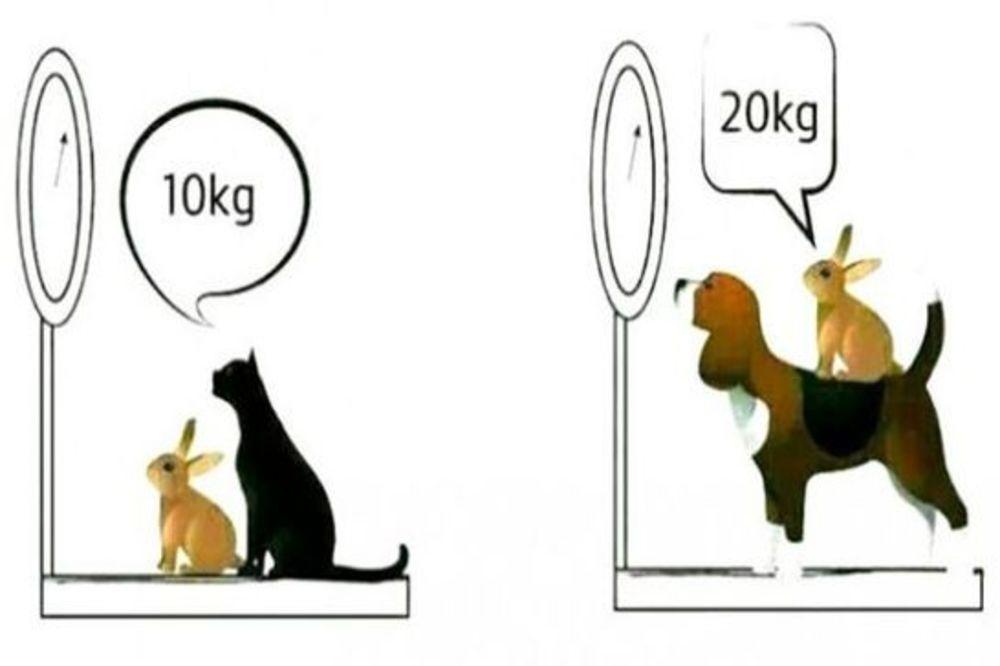 DA LI STE MEĐU NJIMA? Ovu zagonetku može da reši samo 2 odsto ljudi!