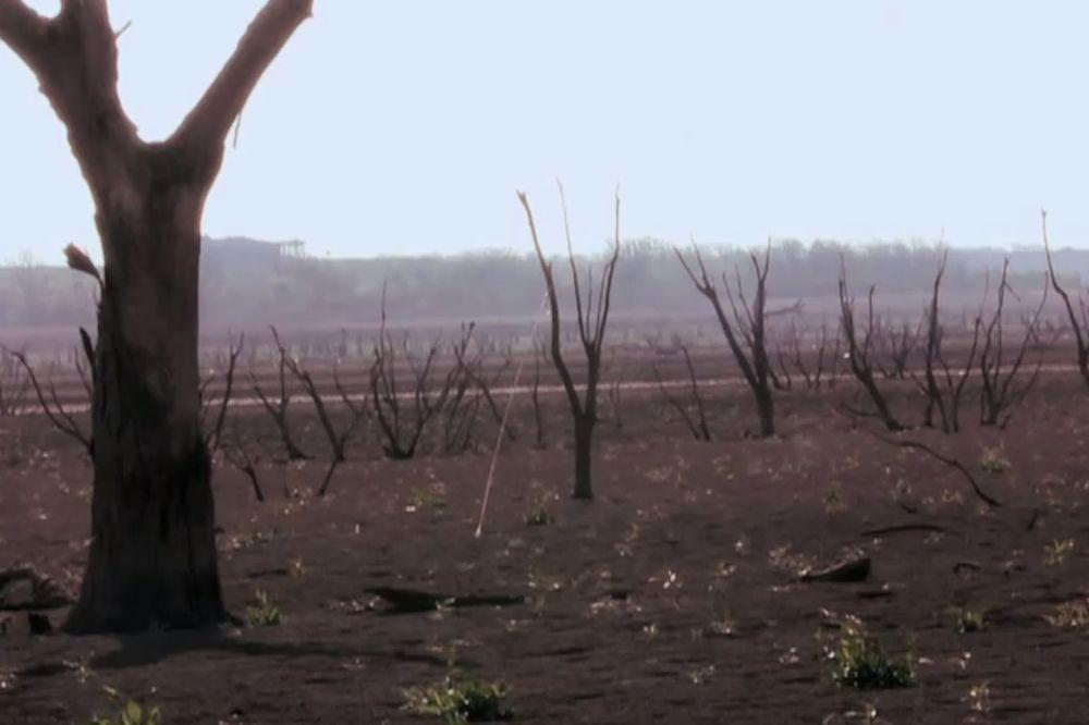 (VIDEO) Meteorolozi objavili uznemirujući snimak šta nas čeka do 2050. godine!