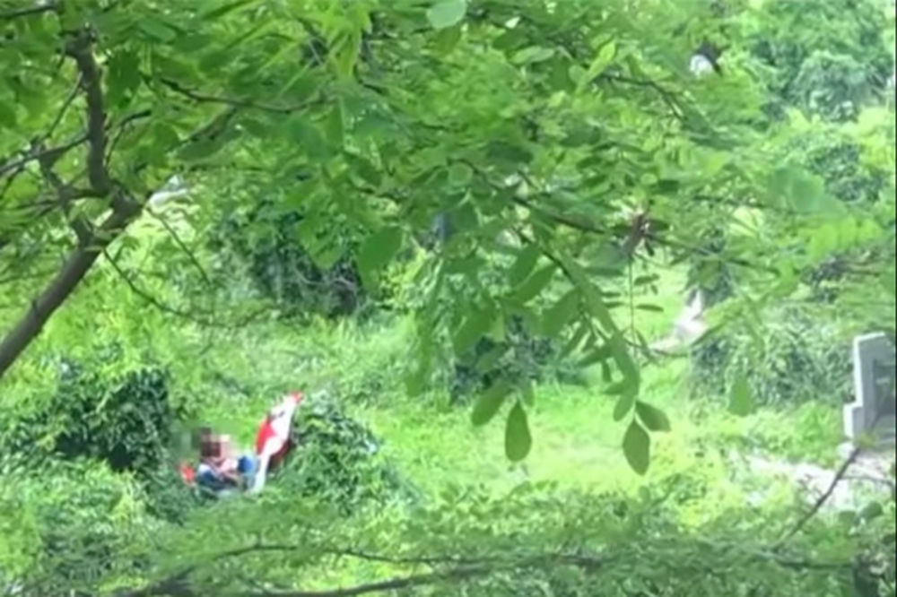 ŠOKANTAN VIDEO OSKRNAVILI GROBLJE GRBAVICA: Drogirali se pa vršili nuždu pored spomenika!