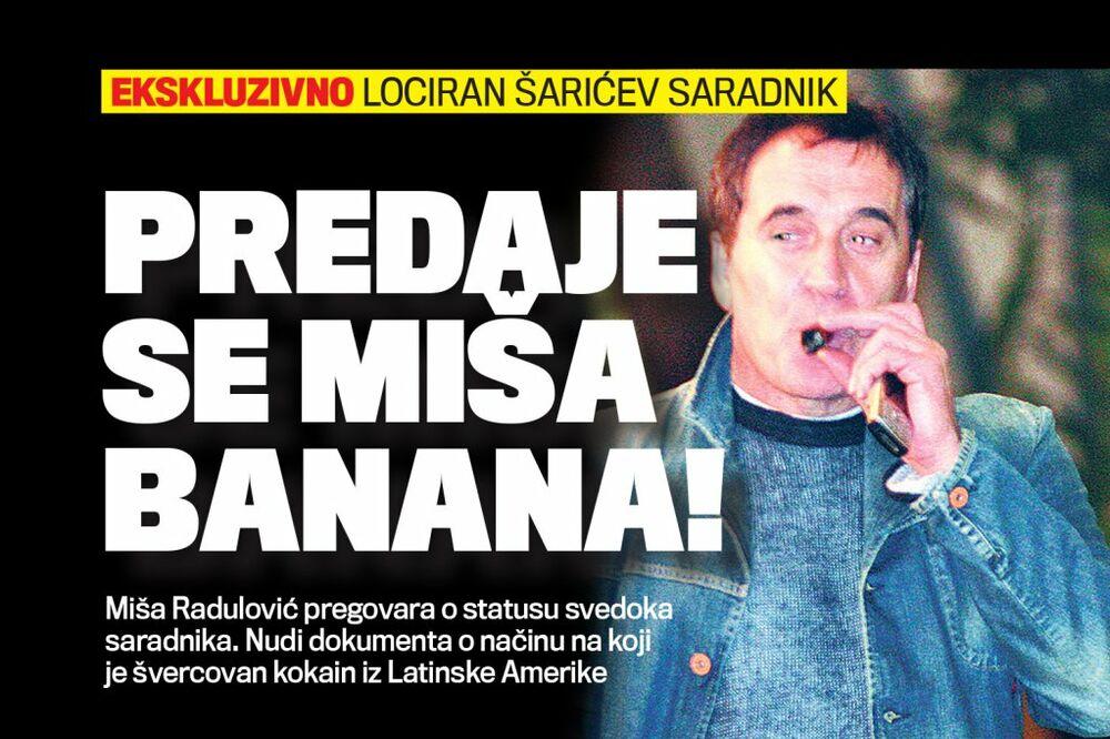 DANAS U KURIRU PREDAJE SE: Miša Banana uskoro dolazi u Srbiju!