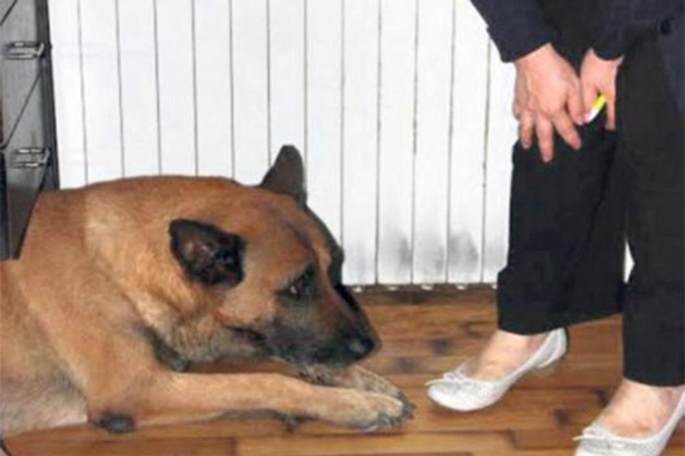 TUGA U VRTU DOBRE NADE: Vukovi tužno zavijaju za svojim Vukom, a pas Jagoš ga nepomično čeka