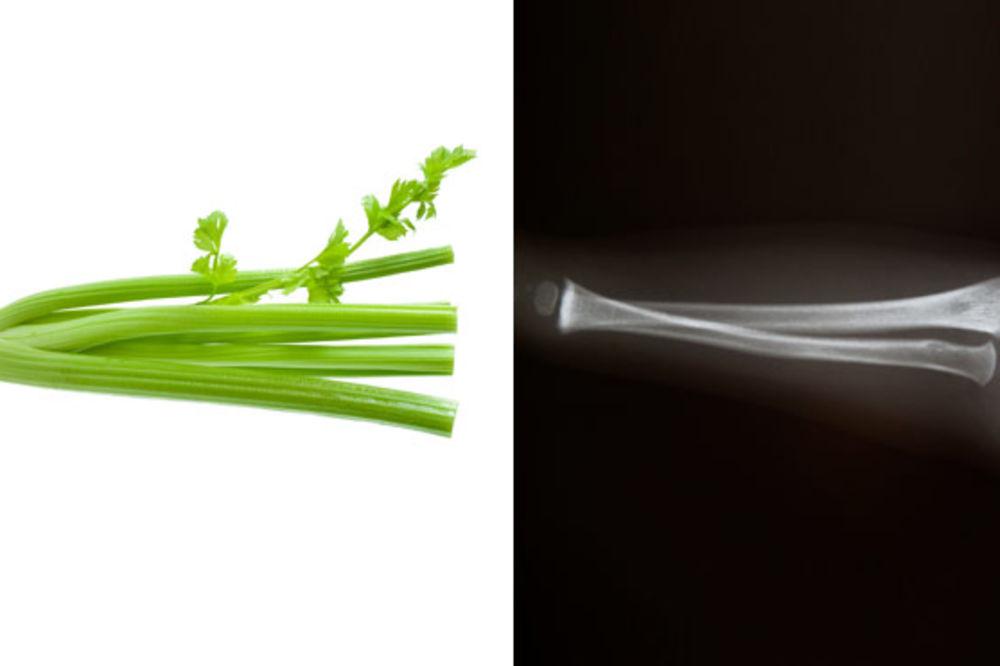 Po izgledu ploda možemo zaključiti koji organ leči U-prirodi-je-sve-povezano-foto-womansdaycom-1411588780-574079