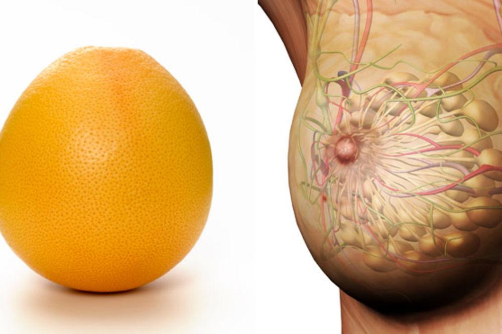 Po izgledu ploda možemo zaključiti koji organ leči U-prirodi-je-sve-povezano-foto-womansdaycom-1411588780-574085