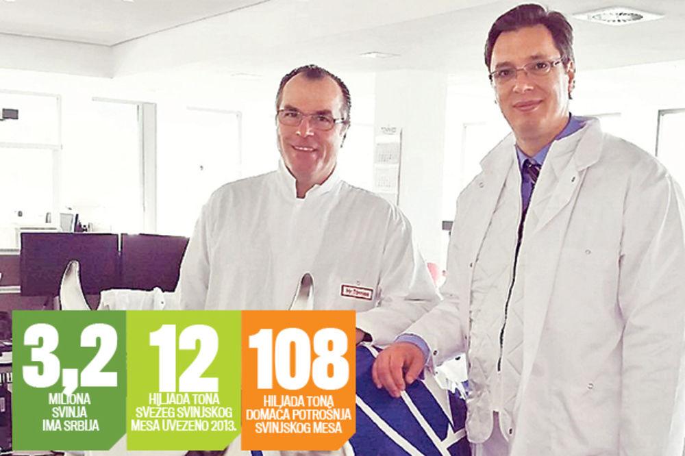 Nemački kralj mesa otvara farmu u Srbiji na 15.000 hektara!