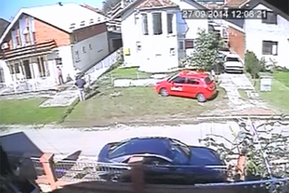 VIDEO PETROVARADIN: Pogledajte šta se stvarno desilo u svađi bračnog para Gojak i Vujića!