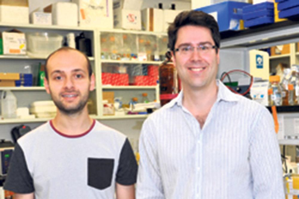 Šaron: Naši rezultati pokazuju da je moguće razviti novu terapiju koja će zaustaviti meduloblastom