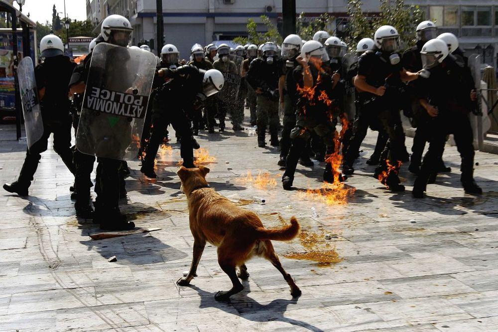 (VIDEO) HRABRO SRCE NIJE IZDRŽALO: Zbogom kuci Kobasici, simbolu grčkih protesta