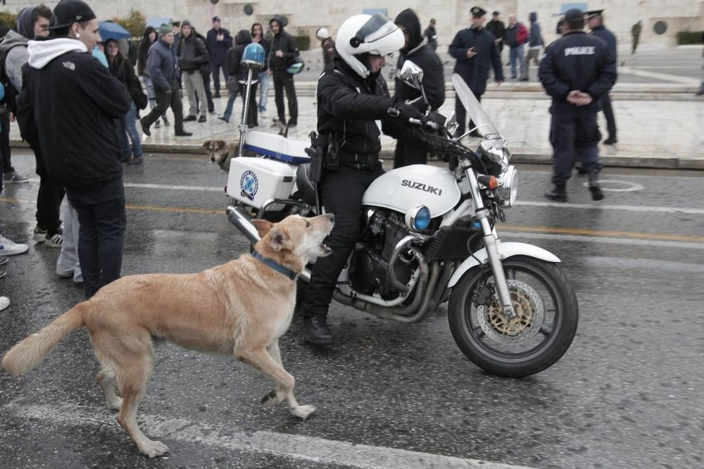 Solidarišimo se sa GRČKIM NARODOM !! - Page 2 Kobasica-pas-grcka-foto-rojters-1412938279-579834