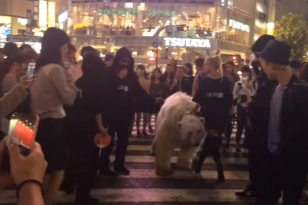 HISTERIJA U TOKIJU: Plavuša šeta belog medveda centrom grada