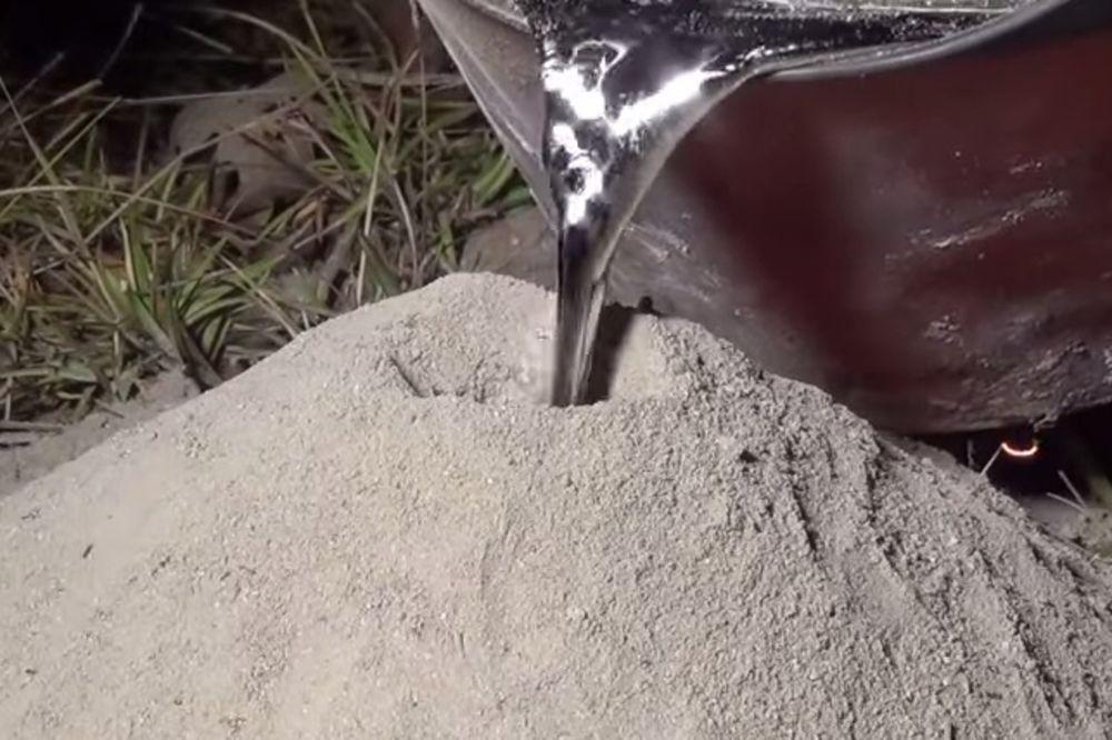 FASCINANTNO: Pogledajte šta se desi kada se u mravinjak izlije topljeni aluminijum
