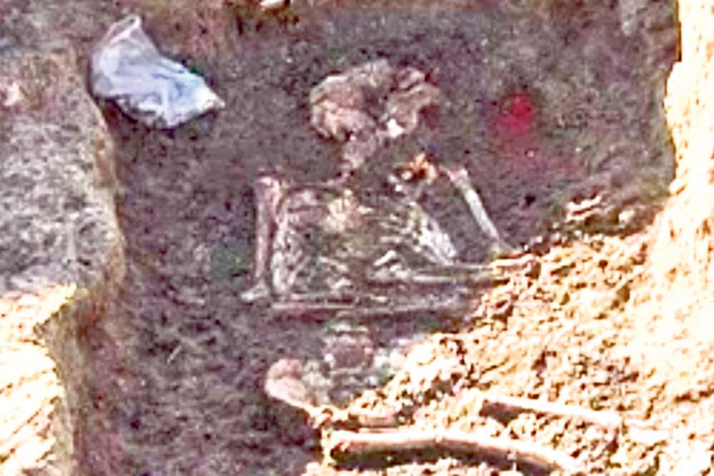 Skelet sa Livada prenet u muzej!