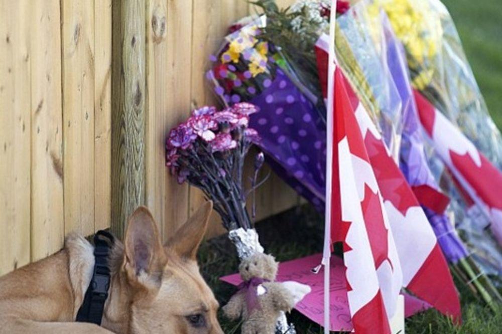 (FOTO) UZALUD SE NADA: Pas preminulog kanadskog vojnika ga verno čeka na kapiji!