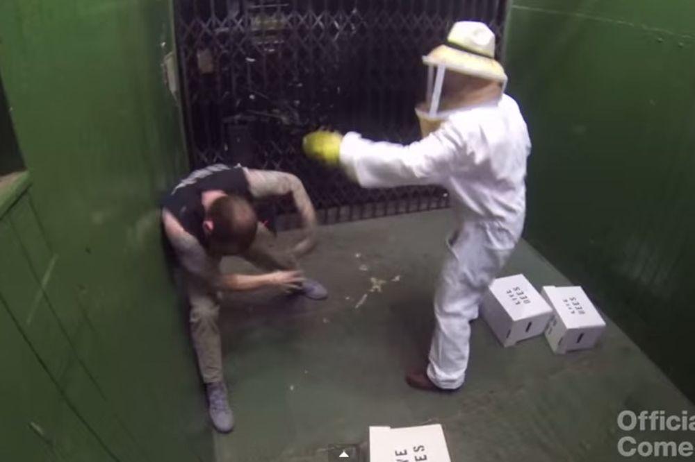 (VIDEO) Pčelaru ispale kutije s pčelama ubicama, a onda je nastao haos u liftu...