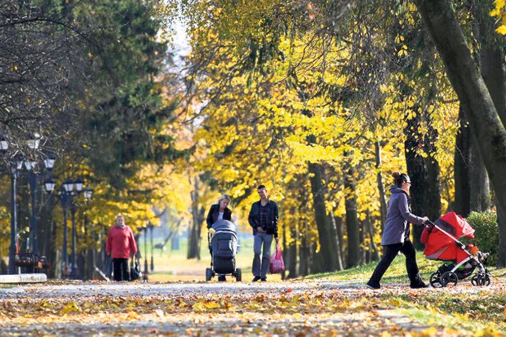 RED SUNCA, RED OBLAKA: Posle hladnog jutra, lep jesenji dan, do 22 stepena